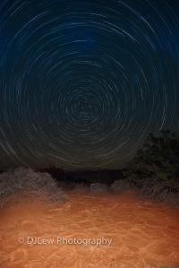Under the stars in the desert
